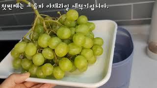 밀가루여사의 추천 살림템. 과일 야채 초음파 세척기, …