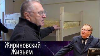 Владимир Жириновский в общежитии ИМЦ. Жириновский живьем от 05.03.18