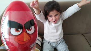 Ayşe Ebrar Angry Birds lü Dev Sürpriz Yumurta Aldı. Eğlenceli Çocuk Videosu