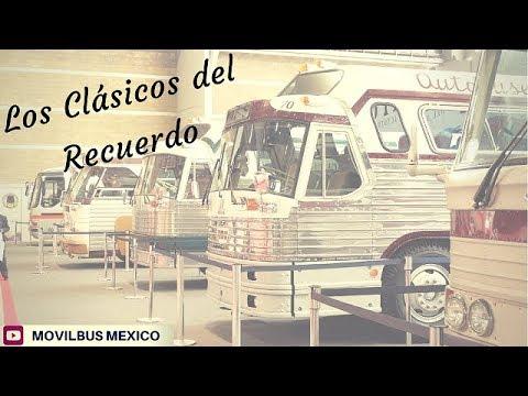 Los mejores autobuses clsicos de Mxico