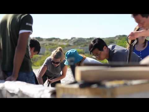 Volunteer Group Trips [Pearson Group] - Cape Town