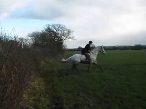 Cheshire Forest Hunt 2015