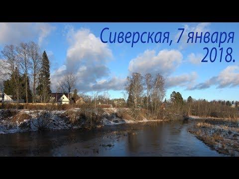 Сиверская, 7 января 2018 г.