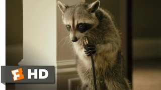 Furry Vengeance 5 11 Movie CLIP Nature Fights Back 2010 HD