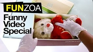 How To Put Teddy In A Box In 4 Steps?