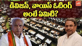 Trust Vote in Karnataka Assembly | What is the Voice Vote and Division Vote | YOYO TV Channel