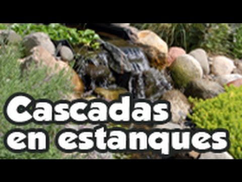 cascadas en estanques