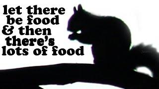 What Do Squirrels Eat - California Ground Squirrel Food - Funny Animals - Cute Animal Videos Jazevox