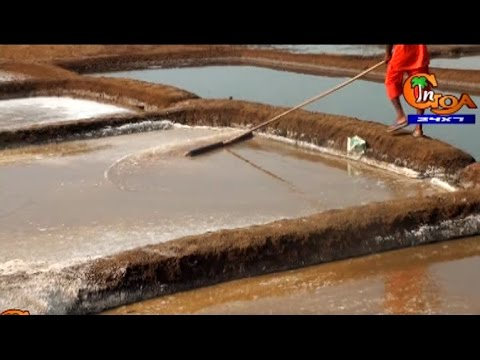 TRADITIONAL SALT PRODUCTION IN GOA