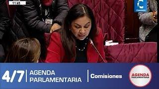 Sesión Comisión de Constitución 4/7 (24/06/19)