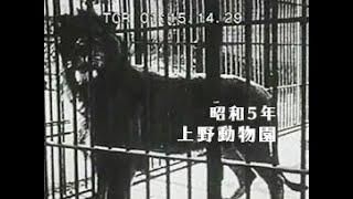 「昭和5年 上野動物園」No.CFSK-0317