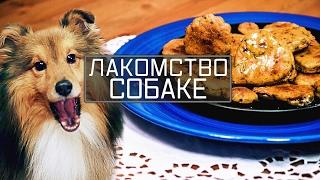 Лакомство собаке. Чем кормить собаку