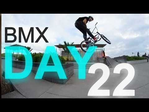 DAY 22 | BMX | BARRY CURTIS SKATEPARK | WINTER 2017