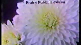 Gambar cover Prairie Public Television ident (1980, #2)