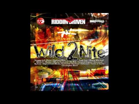 WILD 2NITE RIDDIM MIX (2006)
