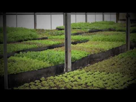 Farm to School at Freshwise Farms
