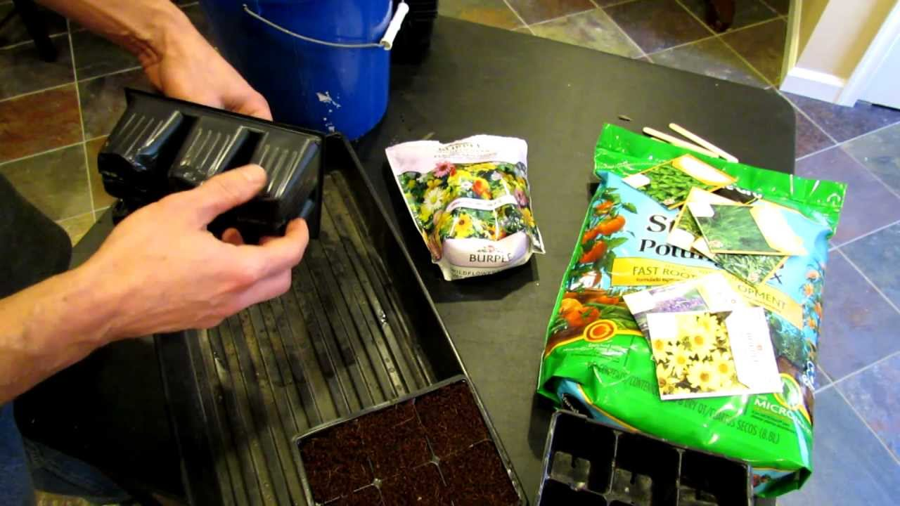 Start Garden Seeds Indoors Starting seeds indoors perennial flower plugs for the vegetable starting seeds indoors perennial flower plugs for the vegetable garden the rusted garden 2013 youtube workwithnaturefo