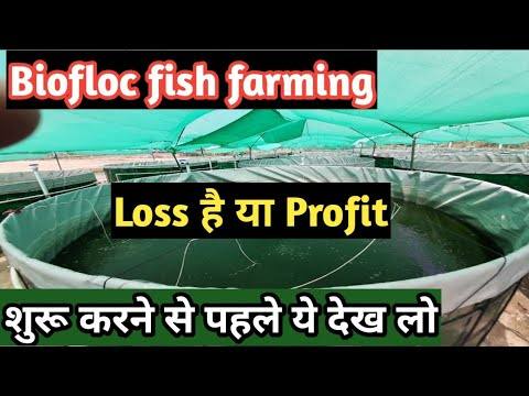Biofloc Fish Farming In India|एक टैंक से 80,000 की कमाई सच या झूठ|मछली पालन