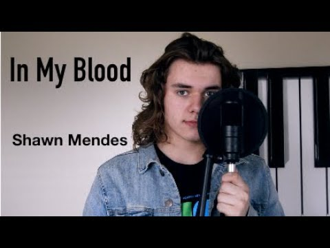 In My Blood - Shawn Mendes  Cover by Noah Alvarado