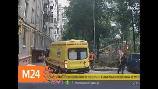 В Москве упавшее дерево насмерть придавило ребенка - Москва 24