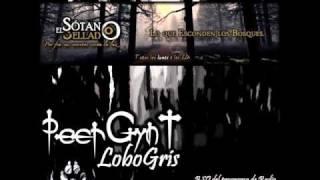 PeerGynt Lobogris - El Sotano Sellado BSO -- Jamendo - MP3 VBR 192k -2013.wmv