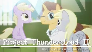 Project Thundercloud II: Shadowbox (My Little Pony fan animation)