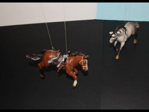 Stallion Stampede