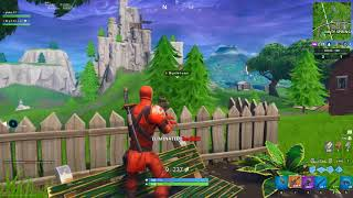 The Deadpool Duo (Hybrid Skin) Fortnite Battle Royale Season 8 Team Rumble.