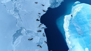 How to save Antarctica (and the rest of Earth too) thumbnail