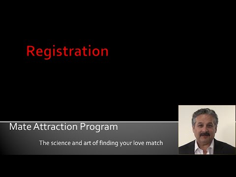 internet dating program