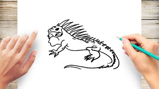 How to Draw Iguana Step by Step for Beginner Slow and Easy