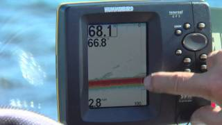 З допомогою ехолот HUMMINBIRD в якості GPS для риболовлі