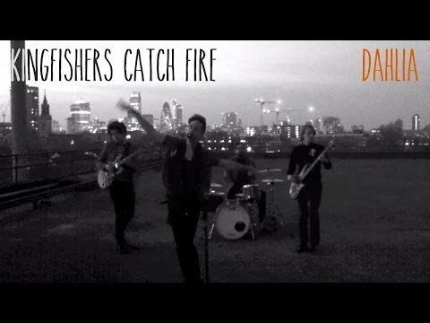 Kingfishers Catch Fire - Dahlia