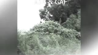 Bangaram Adugaledhu..song by Gods Army Fellowship