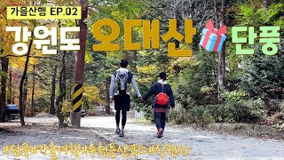 [강원도오대산등산]오대산국립공원/단풍가을산행(코스:상원…