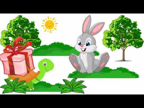 Cerita Kelinci Dan Kura Kura Youtube