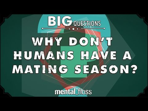 Why don't humans have a mating season? - Big Questions - (Ep. 23)