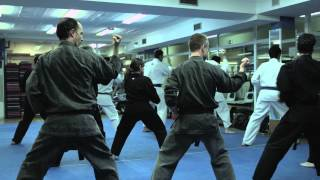 American Kenpo One Day Training