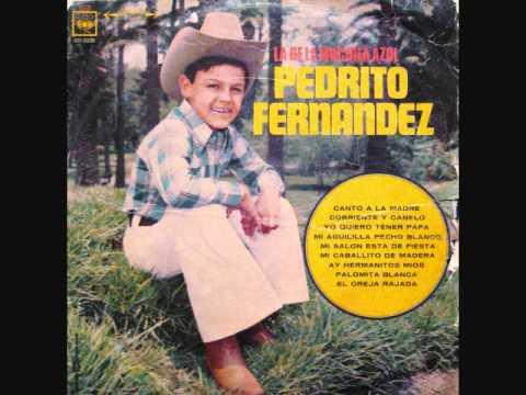 Pedrito Fernandez Canto A La Madre Vinyl Youtube