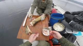 2016 липень богучаны рибалка