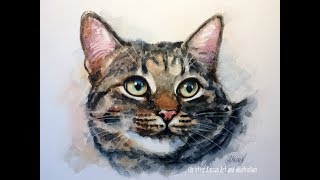 Cat Watercolor portrait REAL TIME painting demo by Ch.Karron