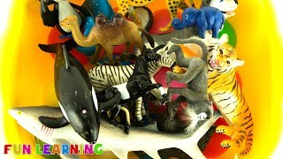 Learn Animals for Kids with Box of Toys Full of Wild Animal Toys
