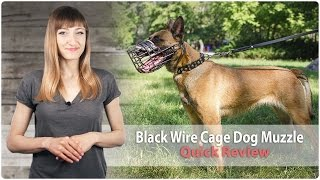Wire Dog Muzzle For Walking And Training - Review