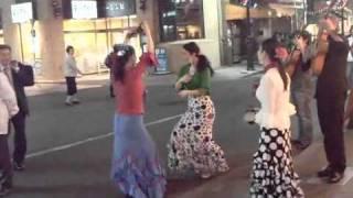 Flamenco on street at Tachikawa.m4v