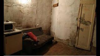 Эту квартиру хозяева пытаются сдать, говорят: ″Жить можно в нормальных условиях″