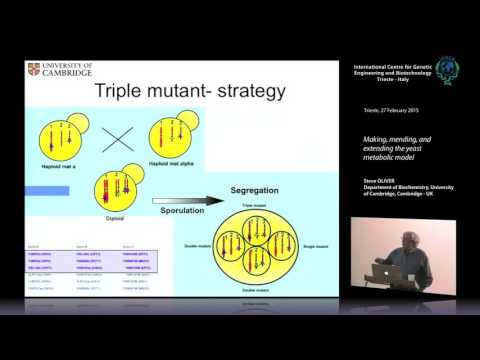 S. Oliver - Making, mending, and extending the yeast metabolic model