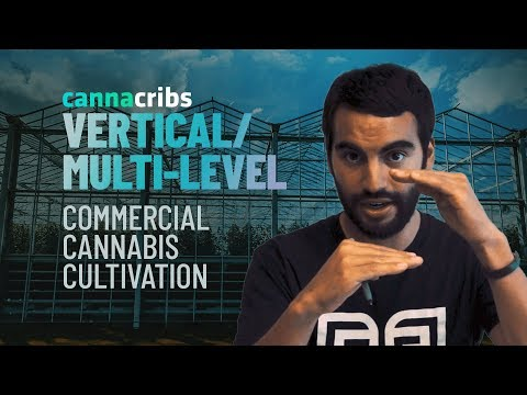 Marijuana Industry Insight - Episode 3: Vertical/Multi-Level