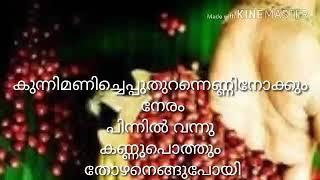 Kunnimani cheppu thurannu malayalam lyrics with song - കുന്നിമണി ചെപ്പ് തുറന്ന്