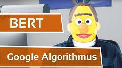 Google & Bert - Revolution des Algorithmus der Suchmaschine?!