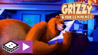 Grizzy i lemingi | Niedźwiedzia poduszka | Boomerang